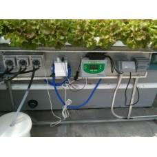 2012HL Standard System - Lettuce