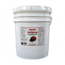 Liquid Ladybug Concentrate 4 Gal
