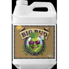 Big Bud Coco 500mL